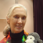 Jane Goodall Thumbnail Photo